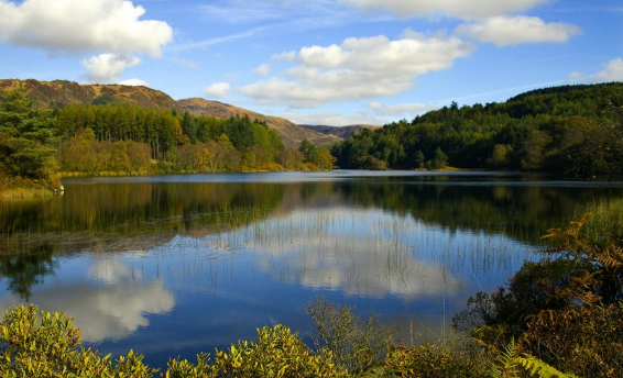 Explore Galloway Forest Park