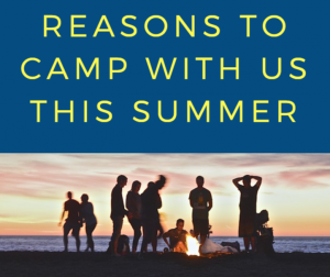 Reasons to Camp this Summer in Dumfries and Galloway