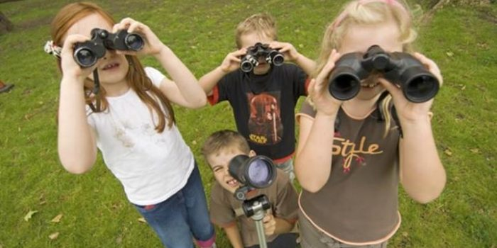 nature watching with the rspb